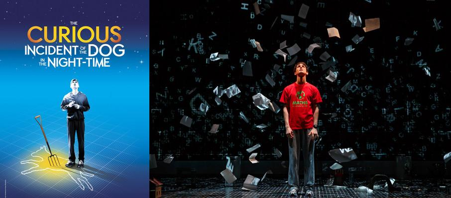 The Curious Incident of the Dog in the Night-Time at Academy of Music
