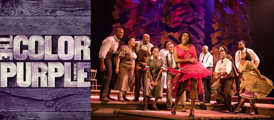 The Color Purple at Forrest Theater