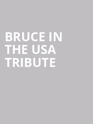 Bruce In The USA Tribute at Penns Peak