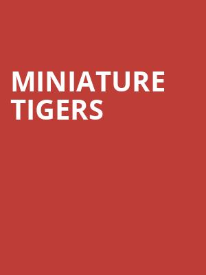 Miniature Tigers at The Foundry - Philadelphia