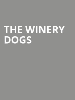 The Winery Dogs at Penns Peak